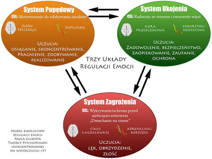 model-regulacji-emocji-trzy-systemy-regulacji-emocji-CFT-terapia-skoncetrowana-na-wspolczuciu  Terapia skoncentrowana na współczuciu: Trzy systemy regulacji emocji model regulacji emocji trzy systemy regulacji emocji CFT terapia skoncetrowana na wspolczuciu