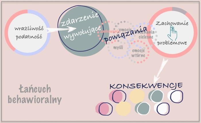 lancuch-behawioralny  Meta emocje, emocje wtórne, schematy emocjonalne lancuch behawioralny
