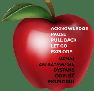 apple-niepewnosc-nietolerowanie  GAD: zaburzenie lękowe uogólnione- poradnik apple niepewnosc nietolerowanie 300x291