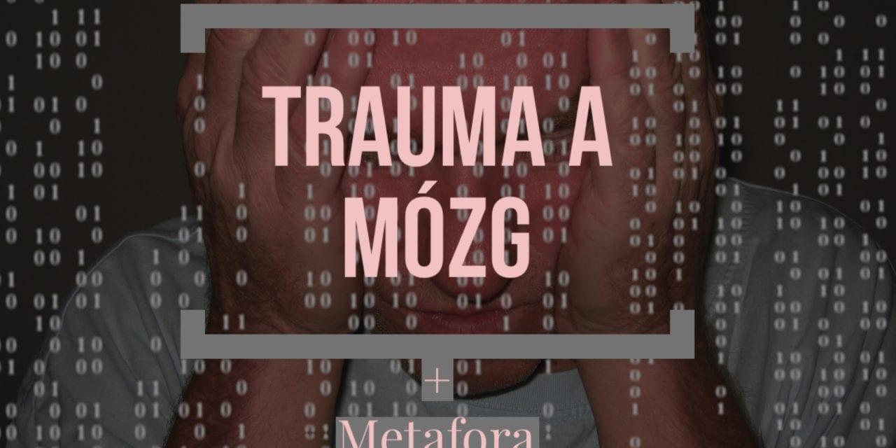 Jak trudne doświadczenia życiowe, trauma wpływa na mózg oraz metafora PTSD