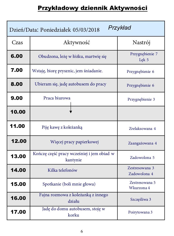 dziennik-aktywnosci-przyklad-1