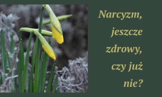 Zdrowy narcyzm
